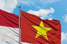 Lanzan concurso de logotipos para conmemorar lazos diplomáticos Vietnam-Indonesia