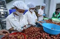 Vietnam y Japón buscan impulsar intercambio comercial