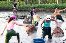 Provincia vietnamita de Quang Ninh apunta a desarrollar el turismo comunitario