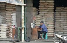 Reserva de arroz de Indonesia superará 22 millones de toneladas en 2020