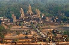 Estimula Camboya a desempleados a dedicarse a la agricultura