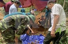 Hallan en Long An más de 35 mil conjuntos de restos de mártires