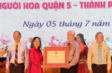 Reconocen en Vietnam festival de los faroles como patrimonio cultural intangible nacional