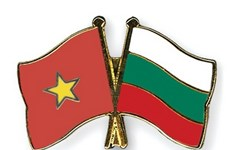 Efectuarán actividades en saludo al 70 aniversario de nexos diplomáticos Vietnam- Bulgaria
