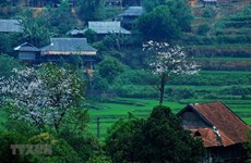 Provincia norvietnamita proyecta recibir más de cinco millones de turistas en etapa 2021-2025