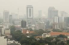 Indonesia se enfrasca en reducir emisiones de gases contaminantes