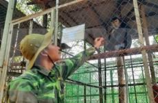 Más de 40 animales liberados en el parque nacional de Quang Binh