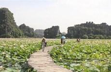 Vietnam busca intensificar medidas para promover el turismo doméstico