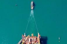 Compañía de industria naval Dung Quat supera la pandemia de COVID-19