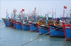 Vietnam se esfuerza para luchar contra pesca ilegal, afirmó Foreign Affair Asia