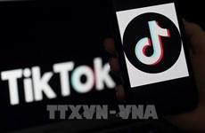 TikTok participa en digitalización de pequeñas y medianas empresas indonesias