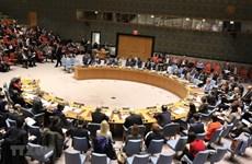 Alaban aportes de Vietnam a labores de Consejo de Seguridad