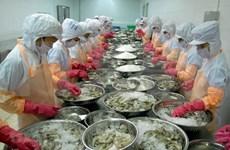 Provincia vietnamita de Ca Mau por recuperar producción y exportación de mariscos