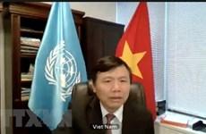 Vietnam reitera apoyo a verificación de la paz en Colombia