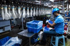 Malasia recauda más de cinco mil millones de dólares de exportación de guantes de goma