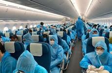 Alertan sobre ofertas fraudulentas en boletos aéreos de regreso a Vietnam