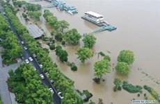 Dirigente partidista de Vietnam expresa solidaridad con China ante graves pérdidas por inundaciones