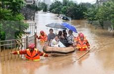 Vietnam presta asistencia a China para superar efectos de desastres naturales