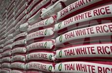 Tailandia aprueba el esquema de garantía del precio del arroz para 2020-2021