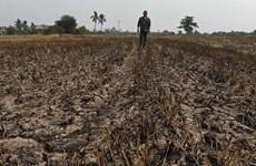 Tailandia enfrenta riesgo de severa escasez de agua, advierten expertos
