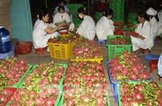 Malasia: Mercado potencial para las exportaciones de Vietnam en etapa postCOVID-19