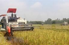 Banco Mundial apoya actividades de agricultores en Filipinas