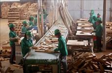 Cerca de la mitad de empresas vietnamitas confían en mejoramiento de los negocios
