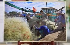 Exposición sobre mares e islas vietnamitas capta atención de visitantes rusos