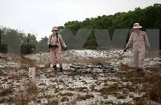 Impulsa provincia vietnamita actividades de remoción de bombas y minas