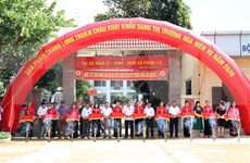 Exporta provincia vietnamita de Son La miles de toneladas de fruta del dragón a Rusia