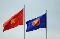 Vietnam refleja los ideales y valores de la ASEAN, según experto indonesio