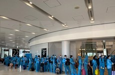 Regresan a casa más de 190 ciudadanos vietnamitas varados en Japón por COVID- 19