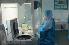 Ciudad vietnamita de Da Nang tomará 10 mil pruebas de COVID-19 en la comunidad