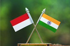 India e Indonesia fortalecen cooperación en defensa-seguridad