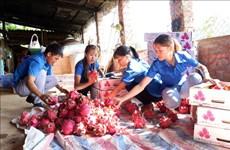 Apoyan acceso de empresas agropecuarias vietnamitas al mercado europeo