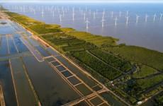 Vietnam se empeña en reducir las emisiones de gases de efecto invernadero