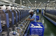 Producción industrial de Vietnam registra crecimiento más bajo