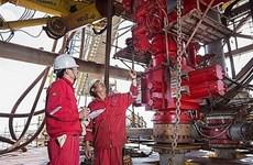 PetroVietnam por alcanzar objetivos del desarrollo del sector petrolero nacional