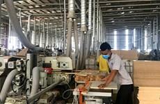 Efectúan en Vietnam reunión en línea sobre plan de acción para implementar el EVFTA