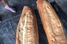 Pan de tres kilogramos en provincia vietnamita entre los alimentos más extraños del mundo
