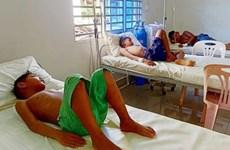 Chikungunya se extiende a 15 provincias en Camboya