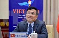 Vicecanciller vietnamita pide asistencia internacional a países en desarrollo en lucha contra el terrorismo
