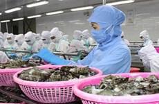 Celebrarán conferencia sobre comercio de bienes de consumo Vietnam- Bulgaria
