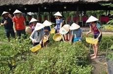 Phu Quoc promueve la ecoagricultura en combinación con el turismo