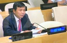Apoya Vietnam resolución de la ONU sobre la paz y seguridad en Guinea Bisáu