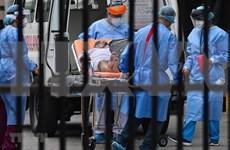 Camboya registra 15 nuevos casos del COVID-19