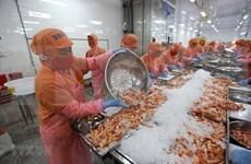 Prevén crecimiento anual de cinco por ciento para exportaciones vietnamitas en 2021-2025