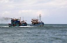 Industria pesquera de Malasia enfrenta dificultades por escasez de trabajadores extranjeros