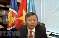 Vietnam muestra preocupaciones sobre situación en Yemen