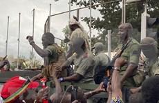 Vietnam exhorta a recuperar la paz en Malí